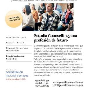 INSTITUTO GESTALT COUNSELLING. EL COUNSELLOR